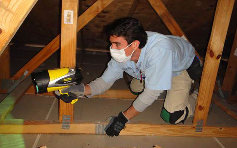 Attic Inspection St Louis
